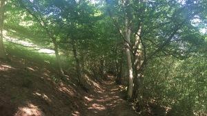 Oberer Bandweg