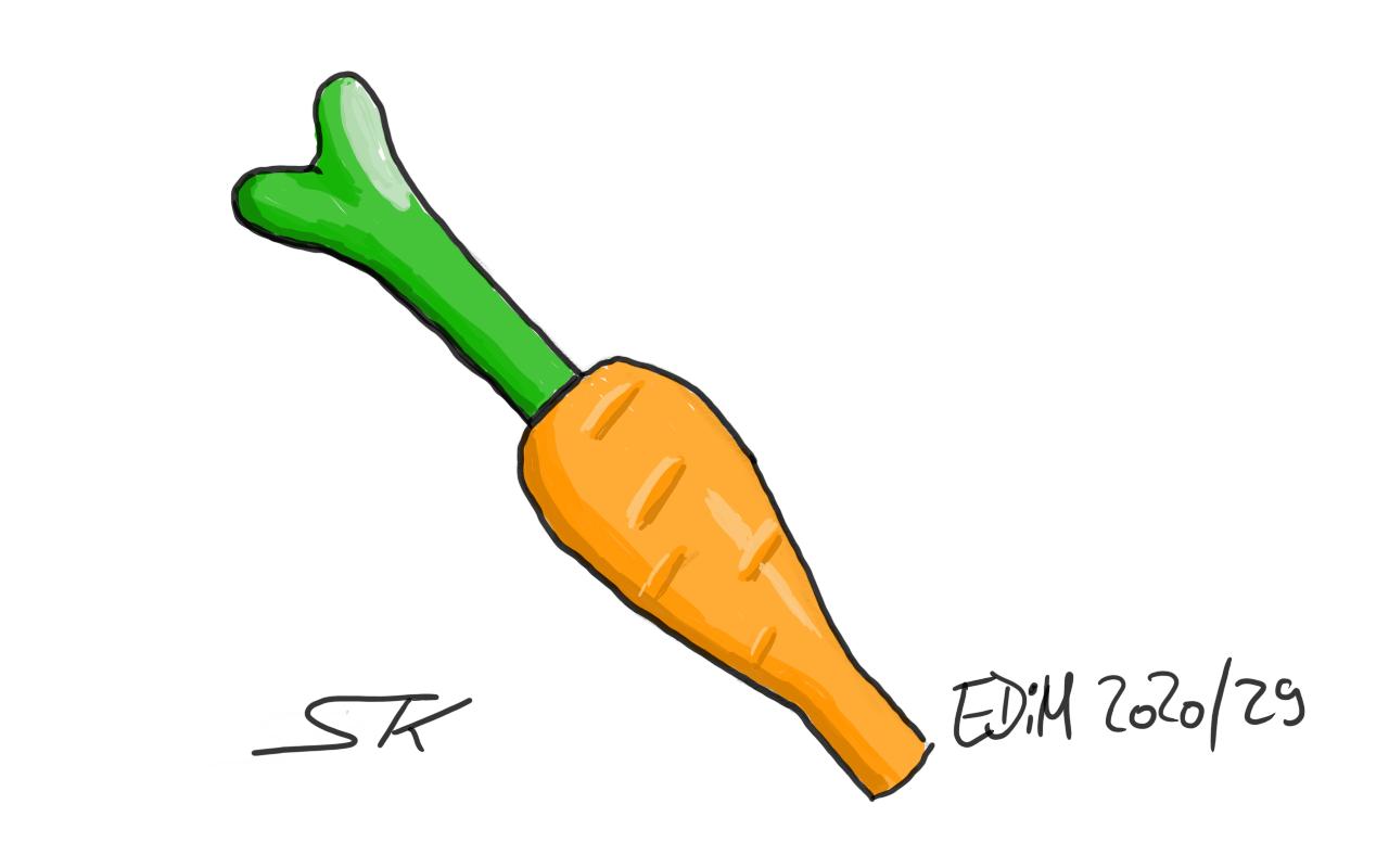 EDiM_2020_29